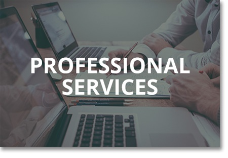 Professional services icon